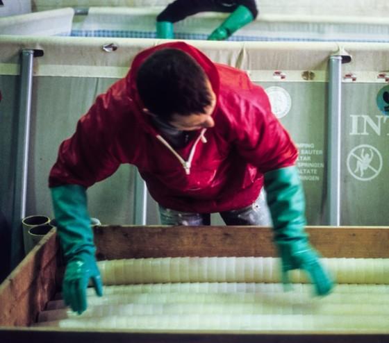 Photo de la chaine de lavage, expédition et récupération des gobelets  au siège de l entreprise d Ecocup